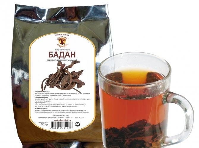 Чай из листьев бадана: лечебные свойства, польза и вред, как заваривать