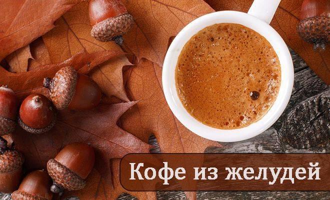Кофе из желудей противопоказания