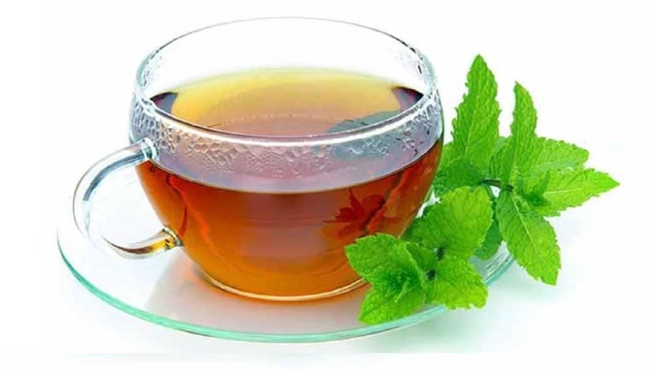 Можно ли беременным чай с мятой?