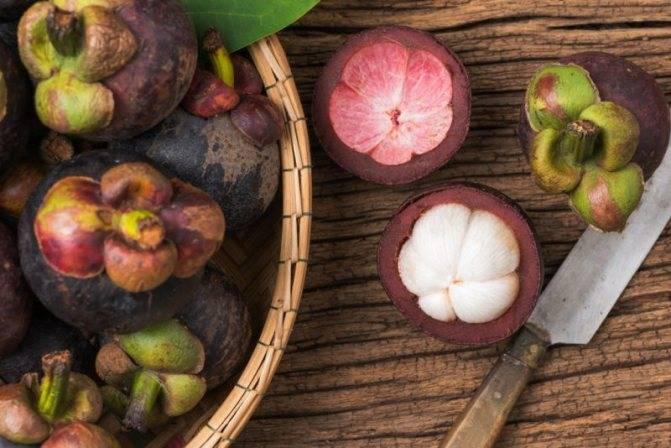 Как пить порошок мангустин для похудения: польза и вред, инструкция по применению