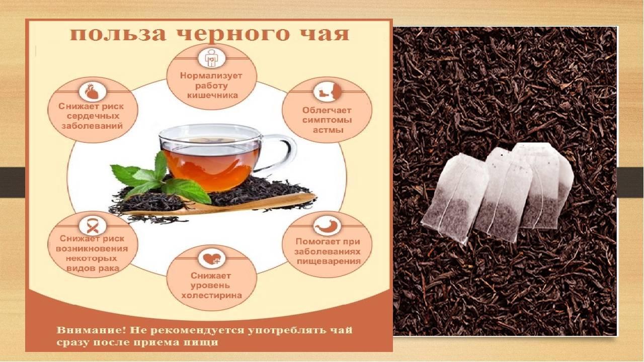 Лучшие сорта чая: рейтинг на 2020 год и советы по выбору