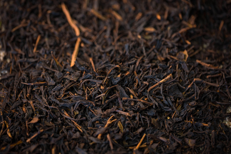 Типсовый чай: польза и вред.