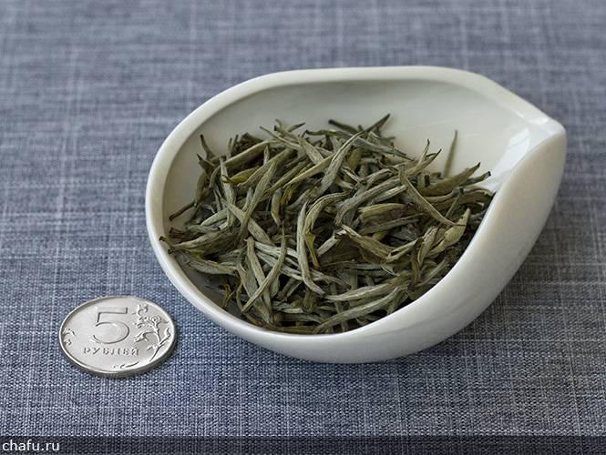 Желтый чай цзюнь-шань инь чжэнь: заваривание, польза и вред, отзывы