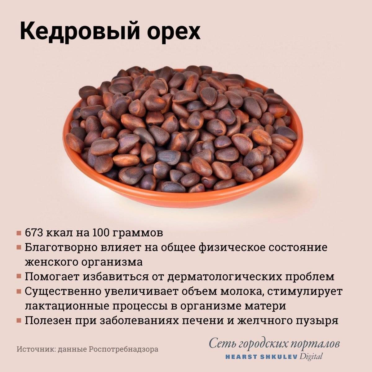 Польза и вред кедровых орехов для организма женщин и мужчин, противопоказания