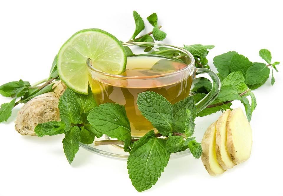 Чай с лимоном - польза, вред и рецепты зеленого, черного и травяного чая с цедрой, имбирем, медом и мятой