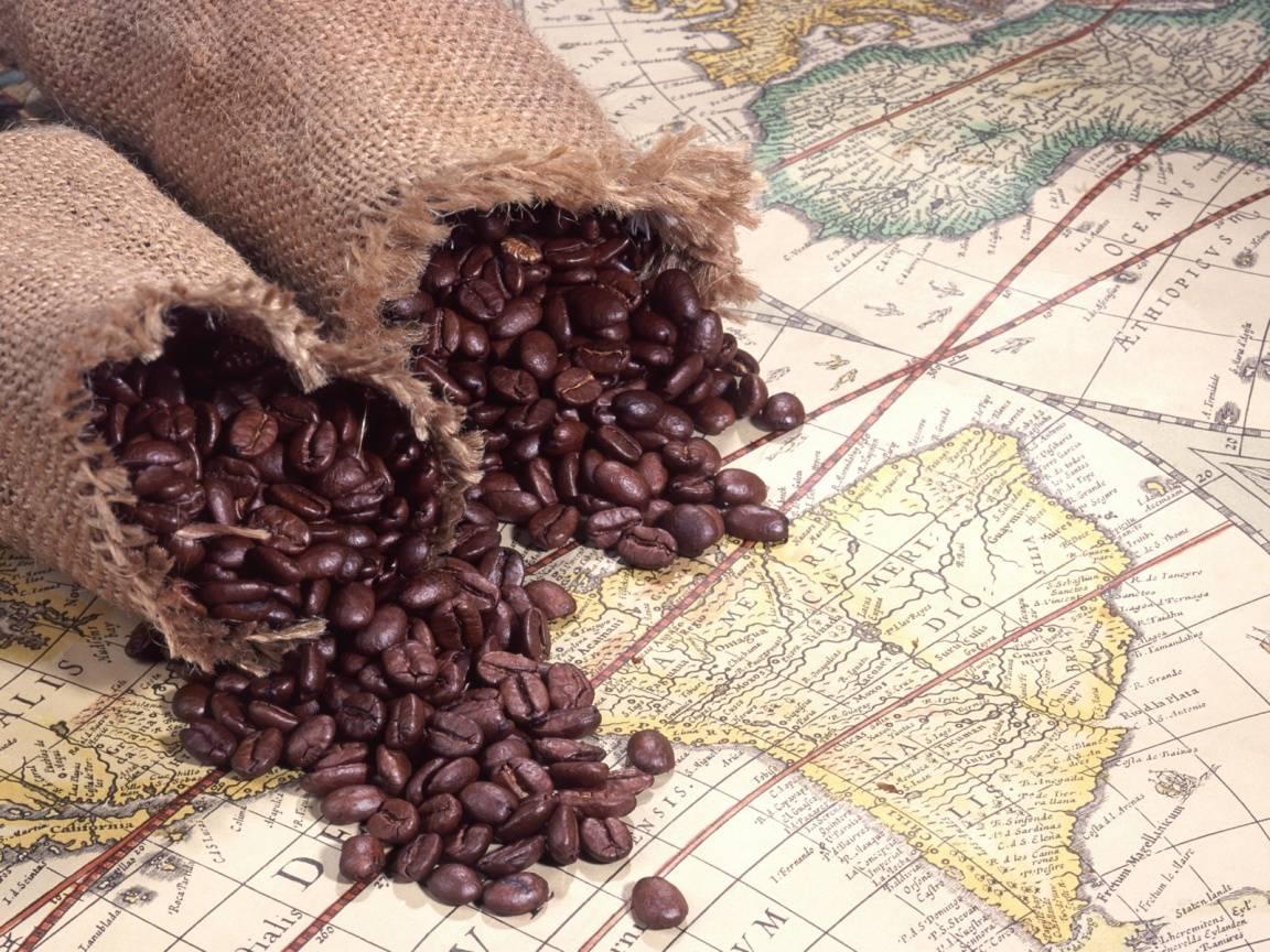 Интересные факты о кофе: история, статистика, традиции