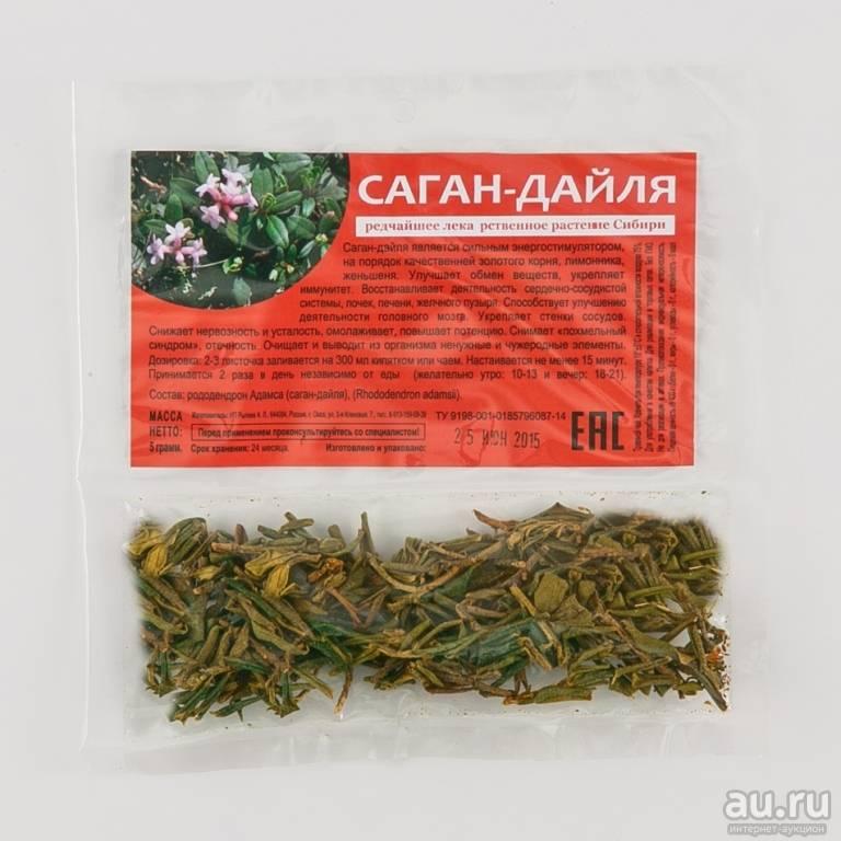 Полезные свойства рододендрона адамса, лечебные свойства растения, саган дайля и его противопоказания