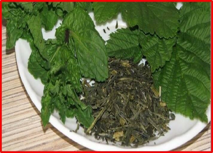 Чай из листьев малины: польза и возможный вред | польза и вред
