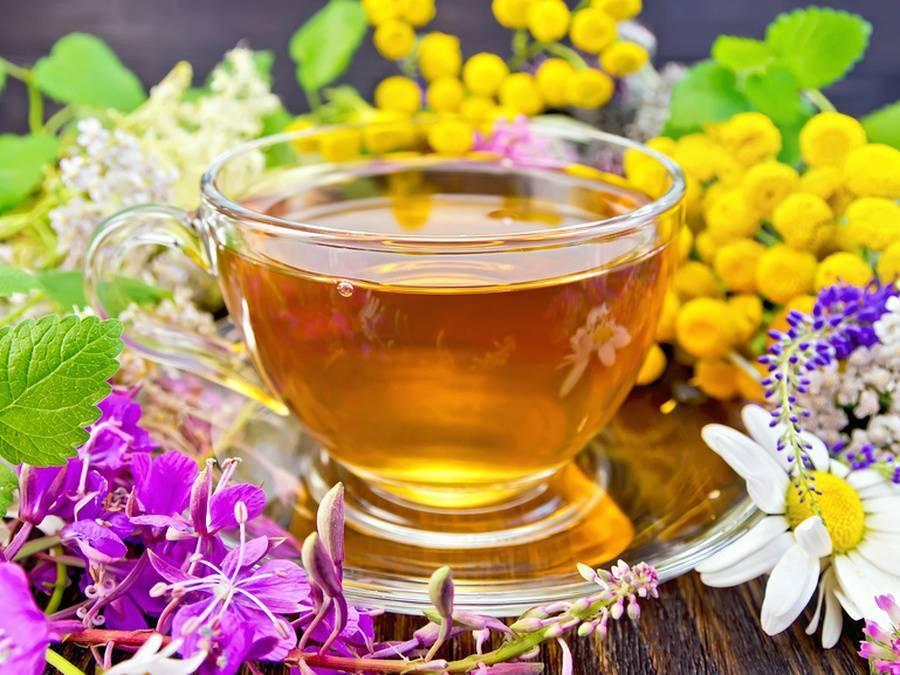 Как правильно заваривать липовый чай