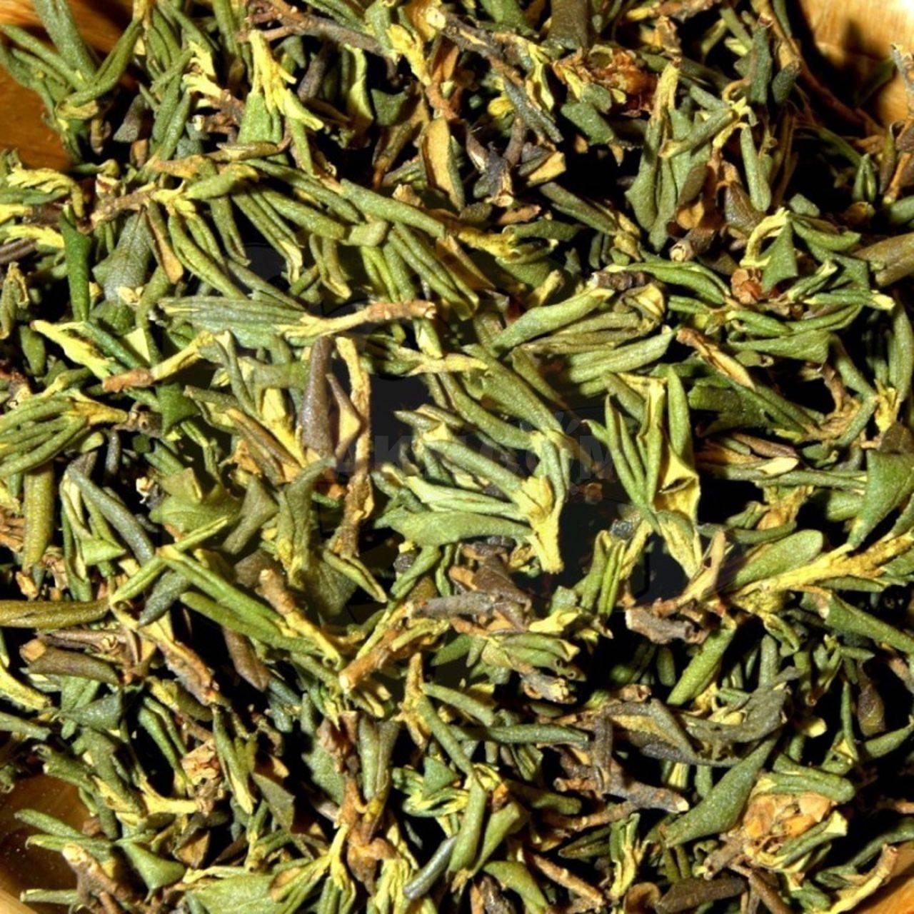 Трава саган дайля: польза и вред | польза и вред