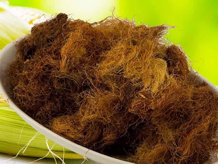 Кукурузные рыльца лечебные свойства для детей