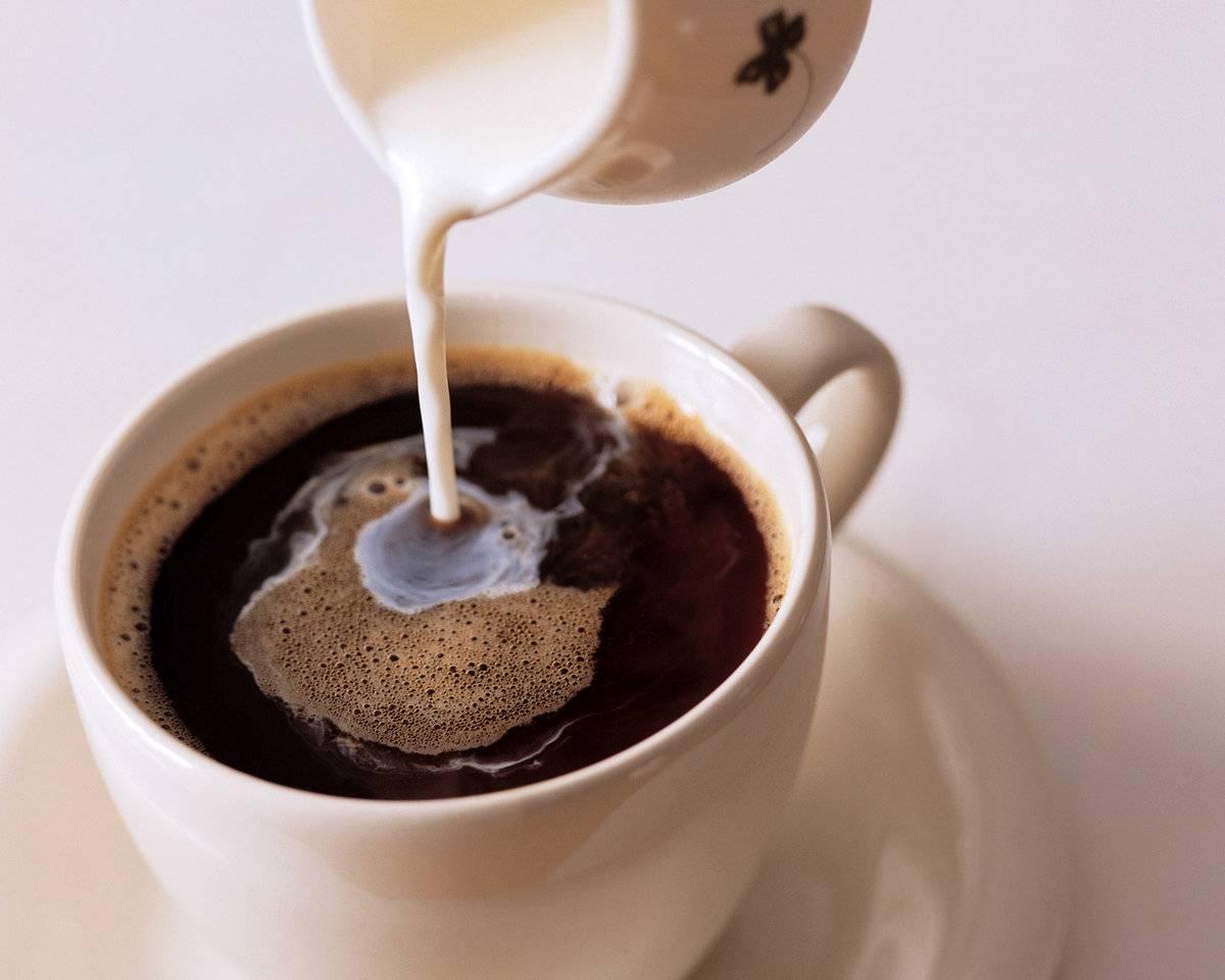 Можно ли поправиться от кофе — отзывы худеющих