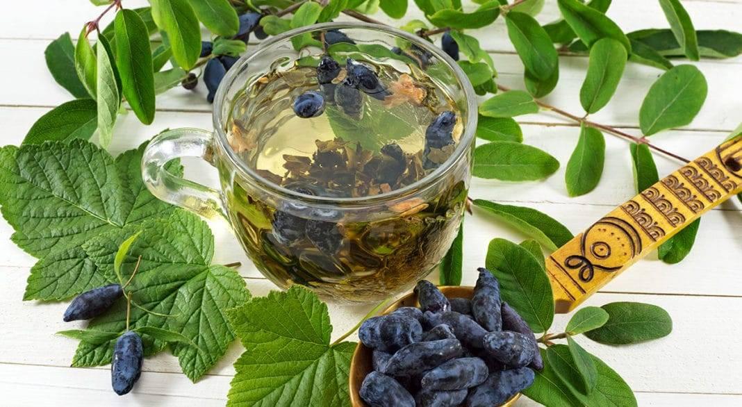 Полезный чай из ягод и листьев черной смородины