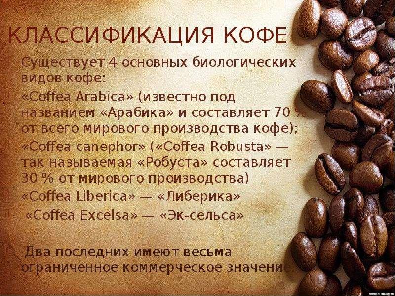 Кофе робуста: разновидности сорта, отличие от арабики