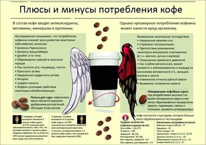 Загадки кофейной гущи. почему одних кофе бодрит, а других усыпляет? | правильное питание | здоровье