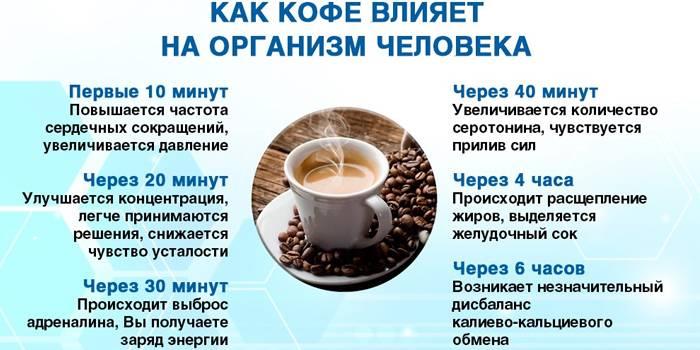 Вредно ли пить много кофе