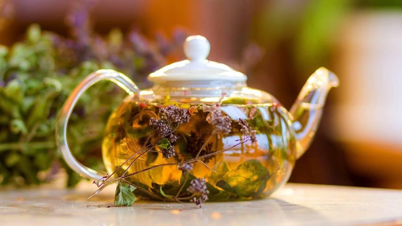 Травы вместо чая на каждый день – какие можно заваривать и пить