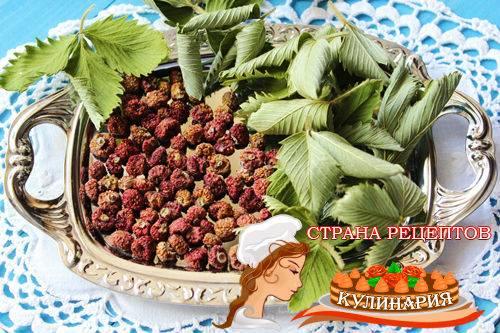 Как сушить землянику, способы высушить ягоды и листья на чай в домашних условиях