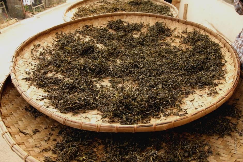 Ферментация чая: что значит ферментированный напиток, как его сделать