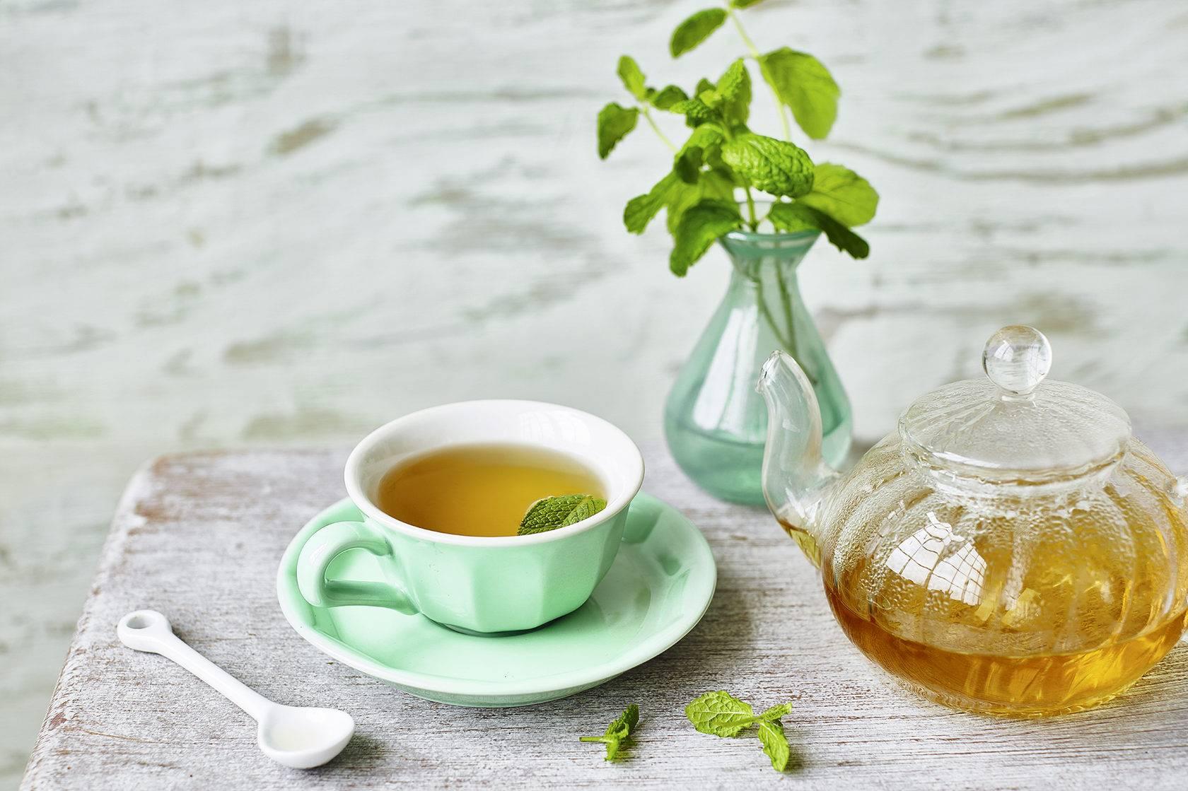 Чай гинкго билоба: инструкция по применению
