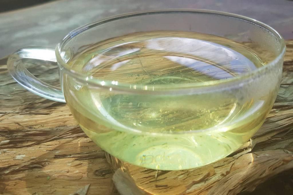 Лемонграсс — состав, полезные свойства, противопоказания | здоровье и красота