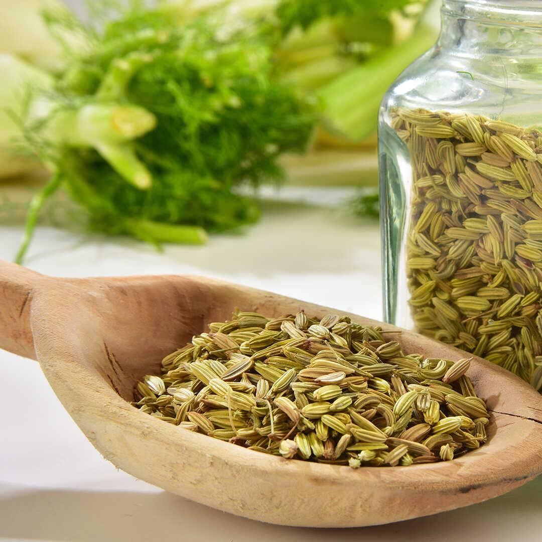 Фенхель – полезные свойства и противопоказания, в чем разница с укропом, применение семян и других частей