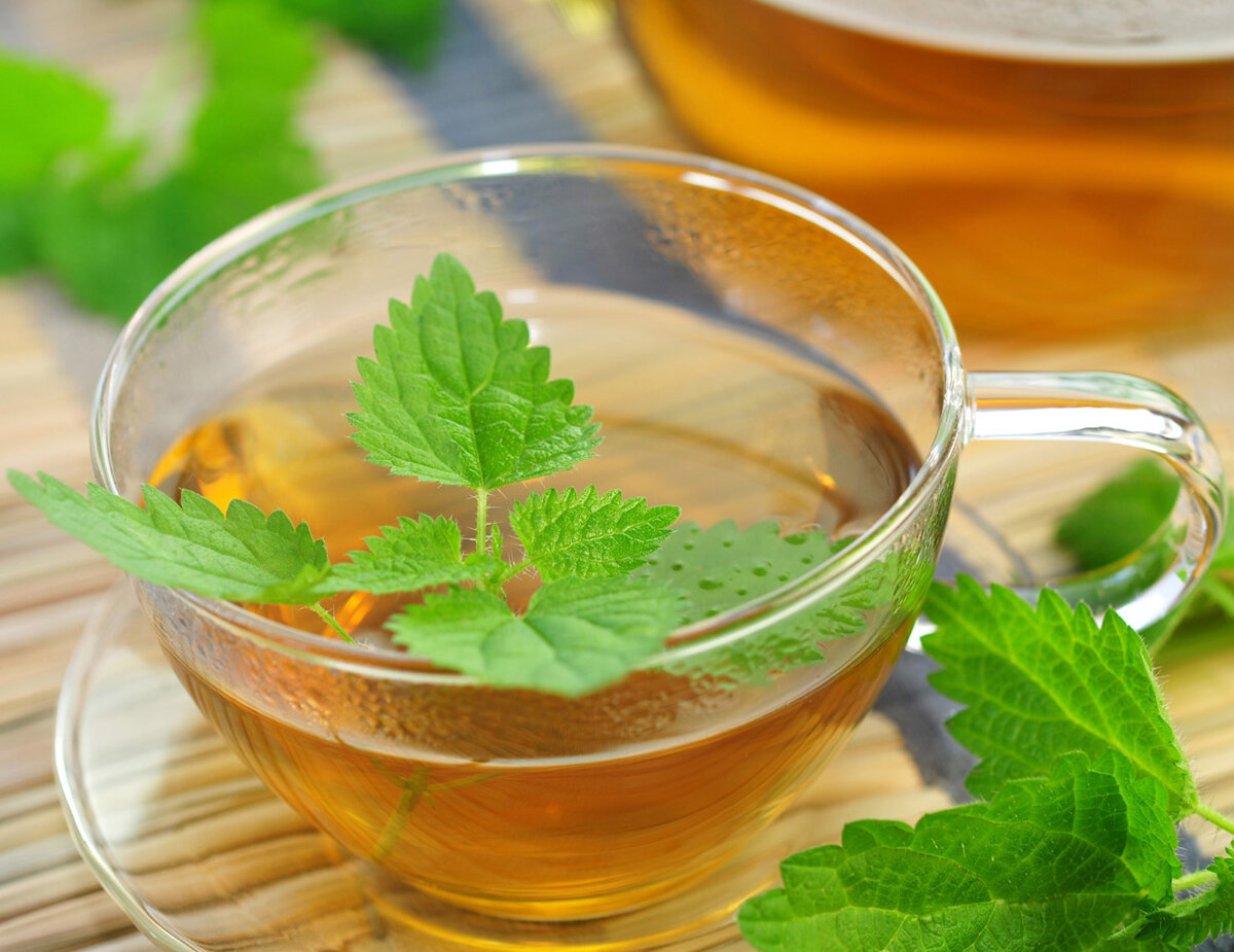 Горячий чай с травой мелиссы лекарственной: неоспоримая терапевтическая польза