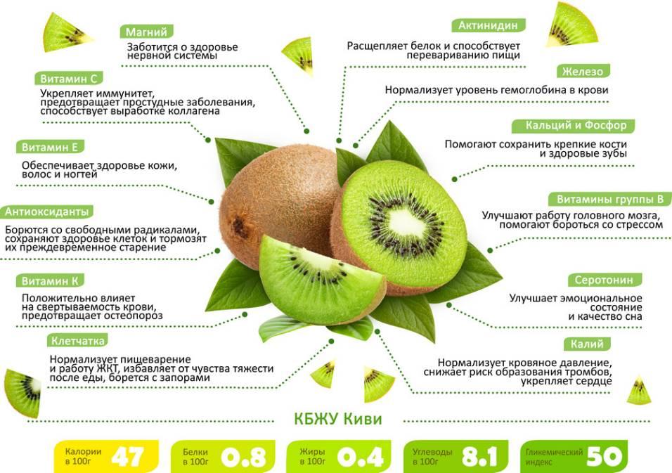 Лёгкое похудение на киви: варианты диет и отзывы о результатах