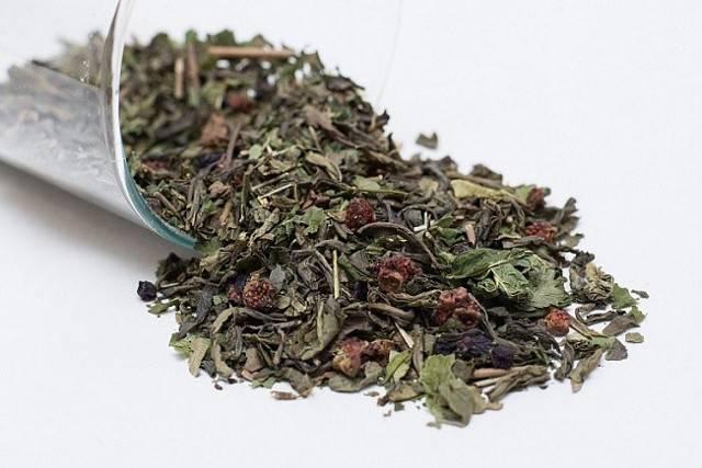 Чай из бадана: заваривание, польза и вред, отзывы
