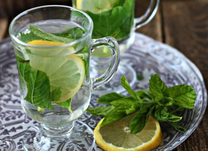 Чай с мятой: полезные свойства и противопоказания мятного чая, рецепты