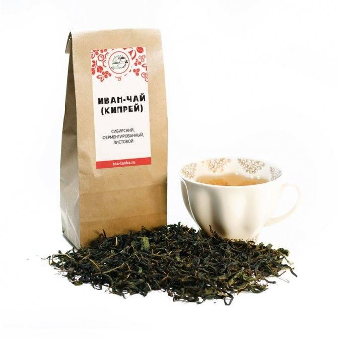 Иван-чай: полезные свойства для мужчин, правила употребления