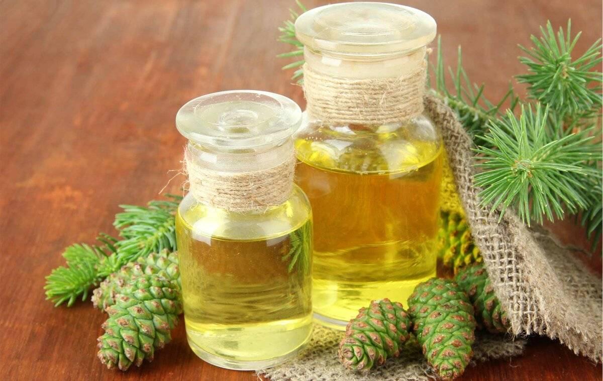 Пихта сибирская: лечебные свойства коры и эфирного масла, применение в народной медицине и косметологии, противопоказания