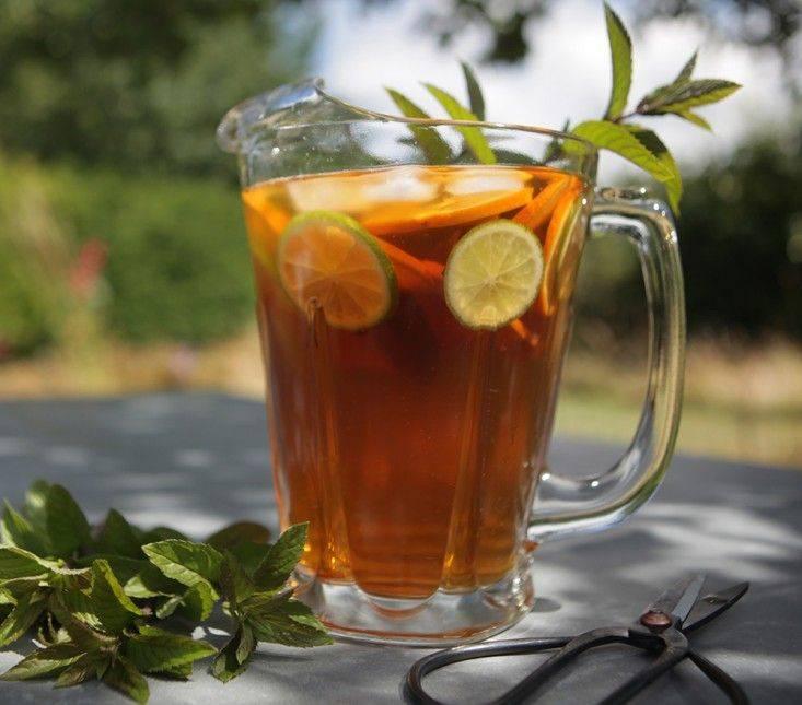 Рецепты настоящего холодного чая