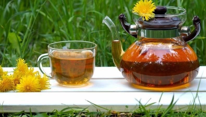 Чай изодуванчика— как пить для похудения, лечения заболеваний иповышения иммунитета