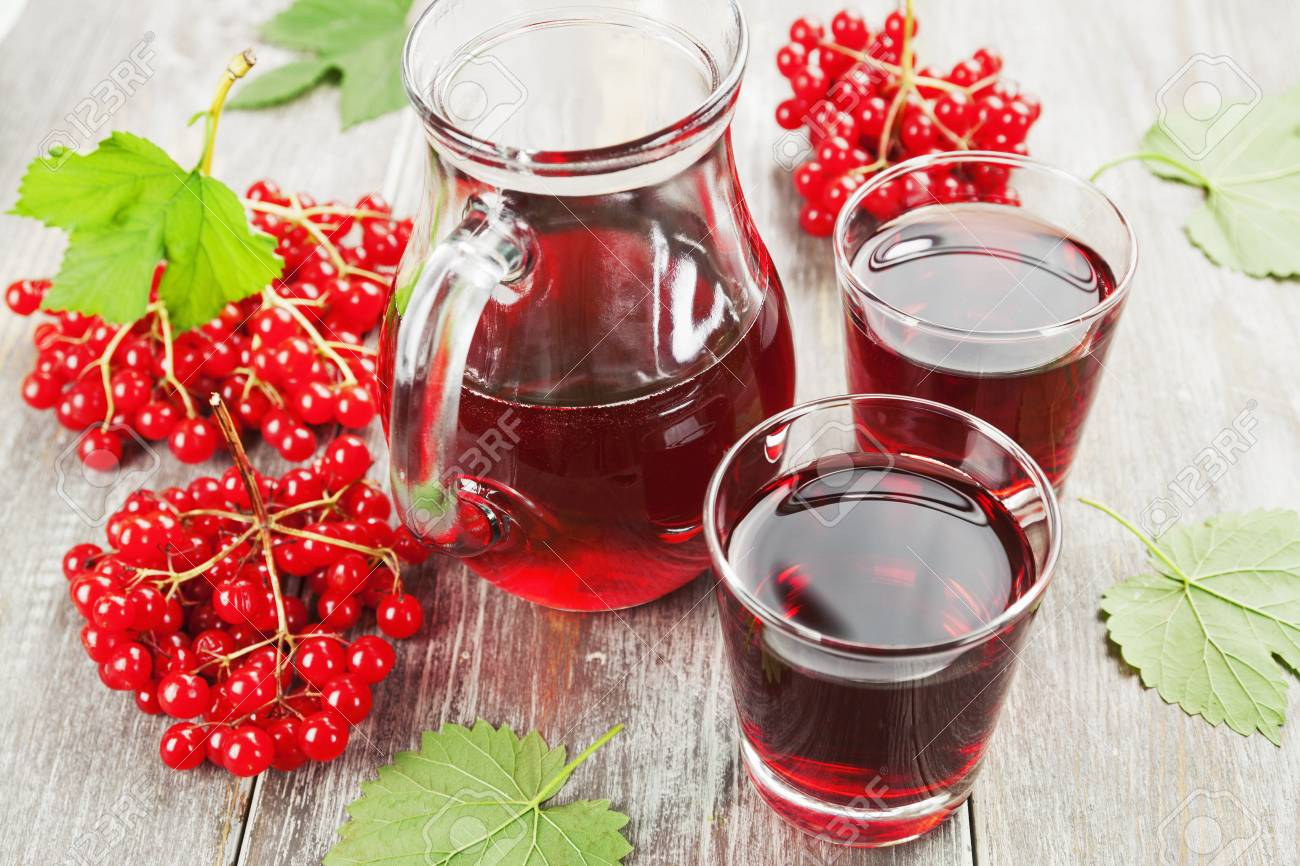 Полезные свойства и рецепты чая с калиной