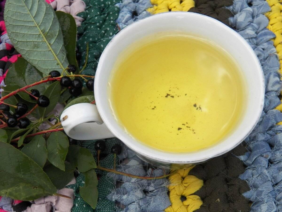 Какие травяные чаи полезны при орви?