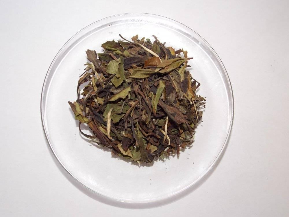 Бай му дань – белый пион – изысканный и великолепный чай