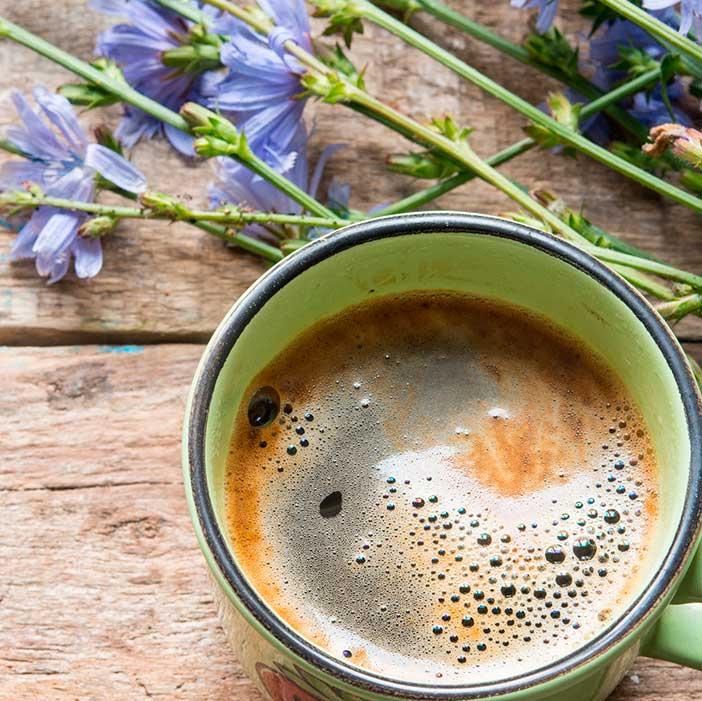 Кофе из цикория - безопасный заменитель любимого напитка