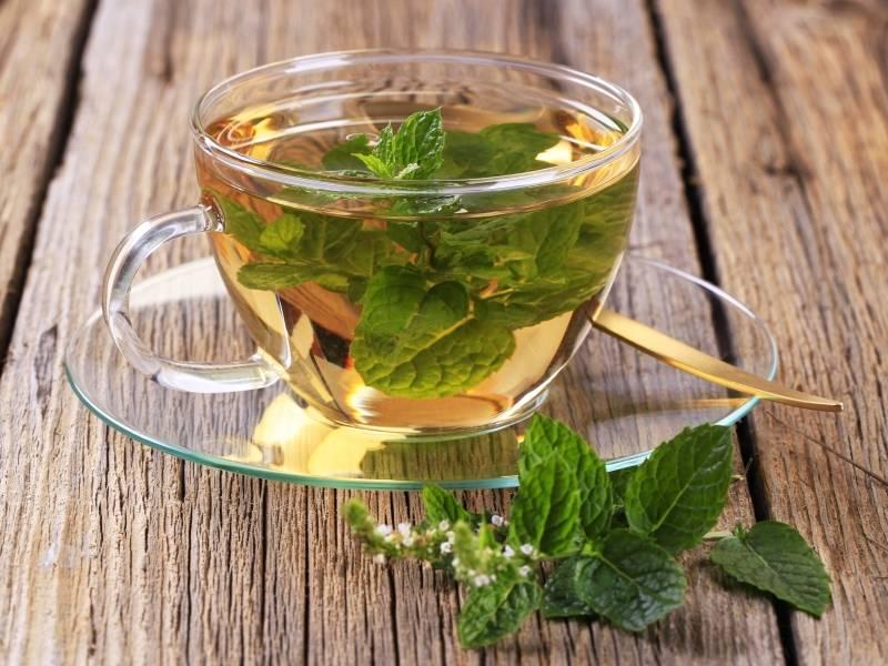 Успокоительные травы для нервной системы: сборы, чай | ваше здоровье | healthage.ru