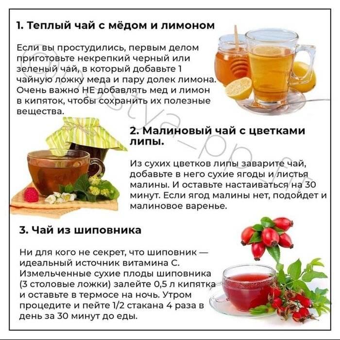 Чай от простуды, или какие травы можно использовать для приготовления целебных напитков