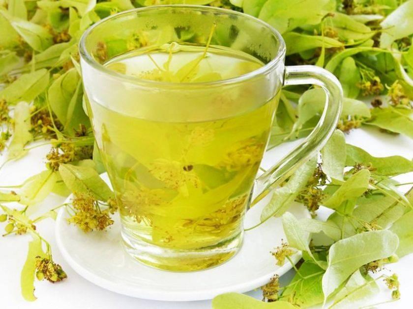 Липа при беременности на ранних сроках: можно ли пить чай из цветков от кашля