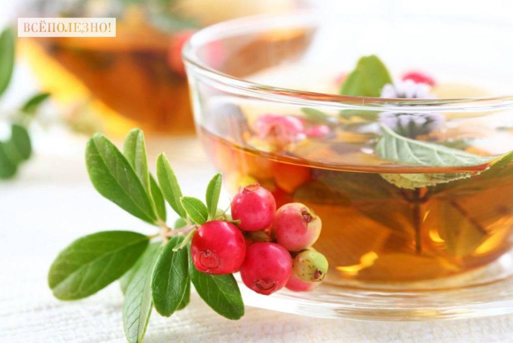 Черешня вред и польза. польза черешни для здоровья? | здоровое питание