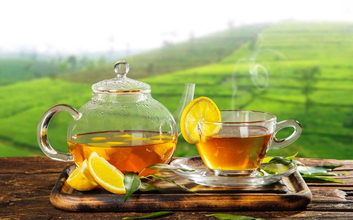 Горячий чай, польза или вред для организма