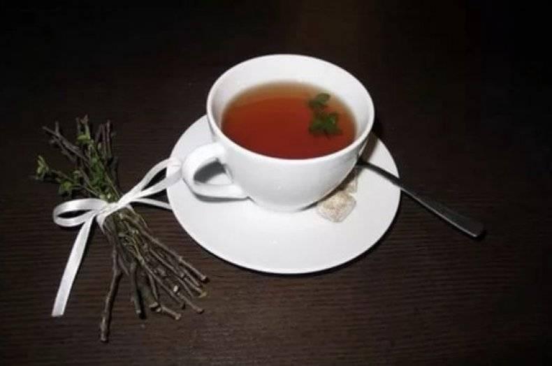 Листья вишни: полезные свойства и противопоказания, применение в народной медицине, рецепты. ферментированный чай из листьев вишни: особенности приготовления