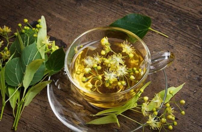 Травяные чаи: лучшие рецепты на все случаи жизни | огородники