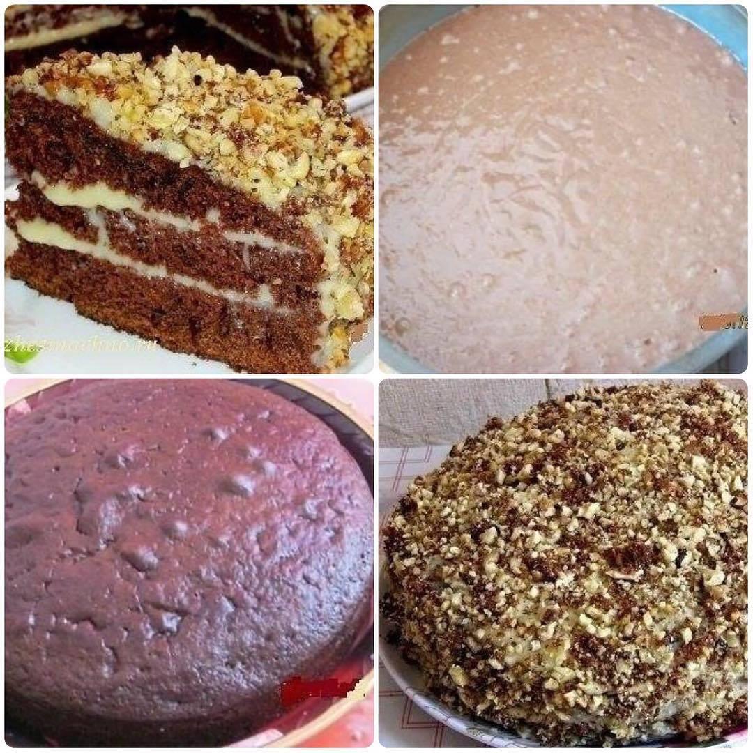 Торт на кефире с какао — пошаговый рецепт с фото