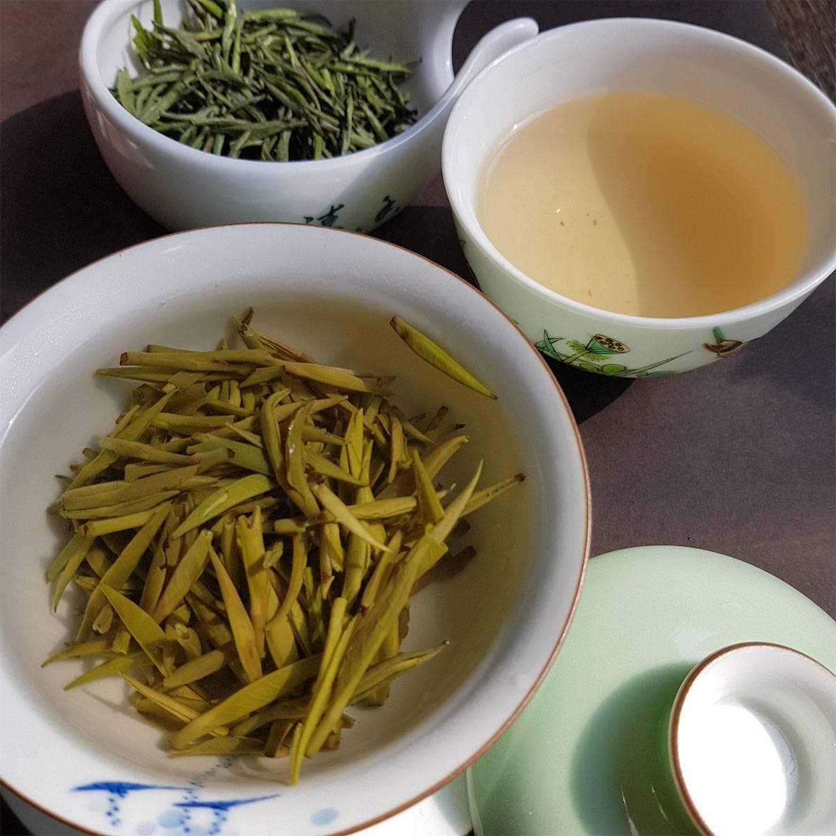 «вчерашний чай – змеиный яд». эксперт – о самом популярном напитке | общество: события | общество | аиф тюмень