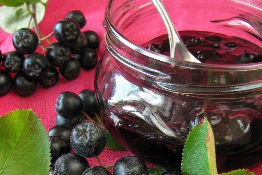 Черноплодная рябина: полезные свойства, заготовки |+отзывы