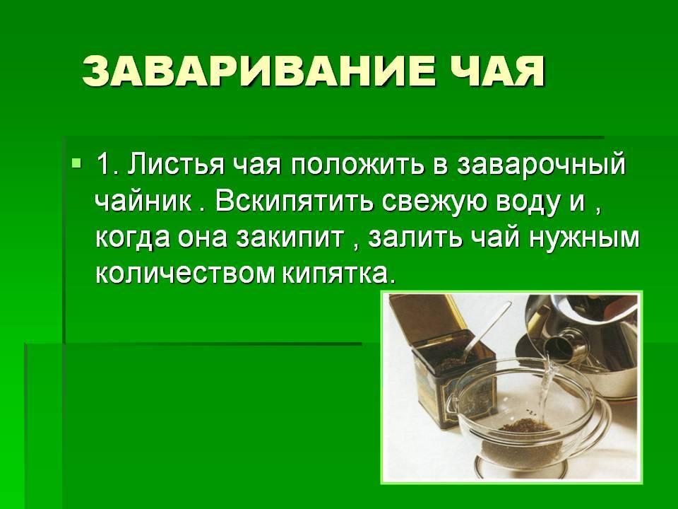 Как правильно заваривать зеленый чай — три традиционных проверенных метода