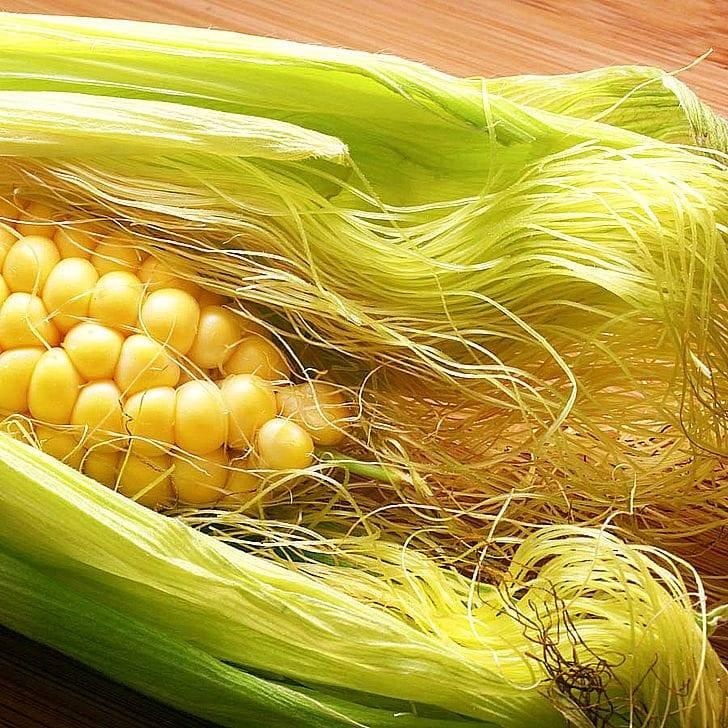Кукурузные рыльца – лечебные свойства и противопоказания применения